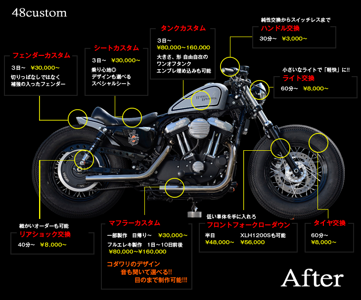 Sportster FORTY-EIGHT CUSTOM  イメージ写真02